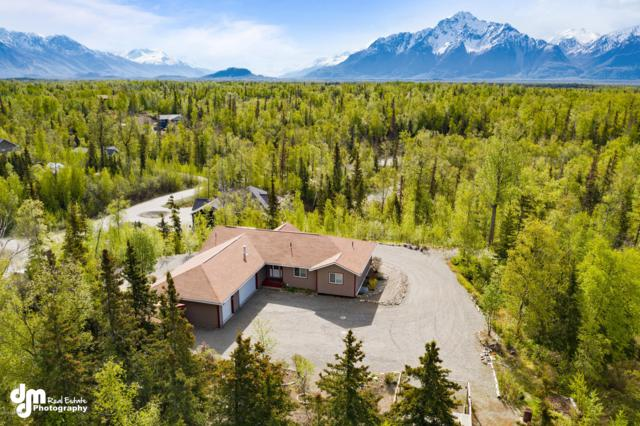 770 N Deshka Ridge Drive, Palmer, AK 99645 (MLS #19-7469) :: Alaska Realty Experts