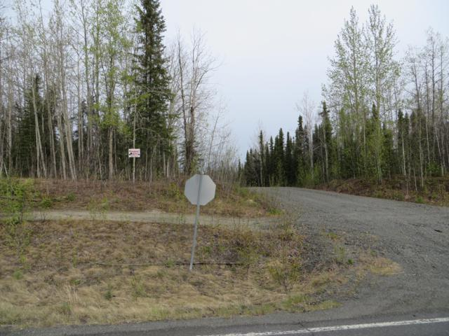 L12A Helgas Court, Soldotna, AK 99669 (MLS #19-7646) :: Roy Briley Real Estate Group
