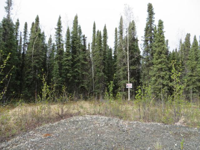 L12B Helgas Court, Soldotna, AK 99669 (MLS #19-7648) :: Roy Briley Real Estate Group