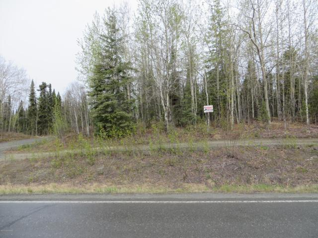 L12E Helgas Court, Soldotna, AK 99669 (MLS #19-7650) :: Roy Briley Real Estate Group