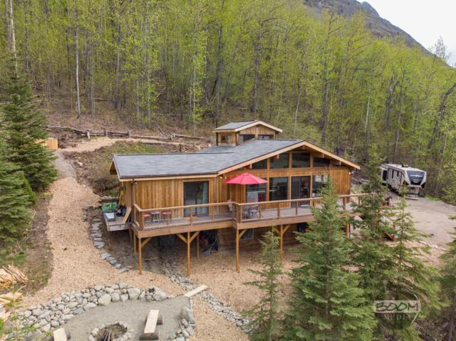 22343 Lake View Drive, Eagle River, AK 99577 (MLS #19-7936) :: Roy Briley Real Estate Group