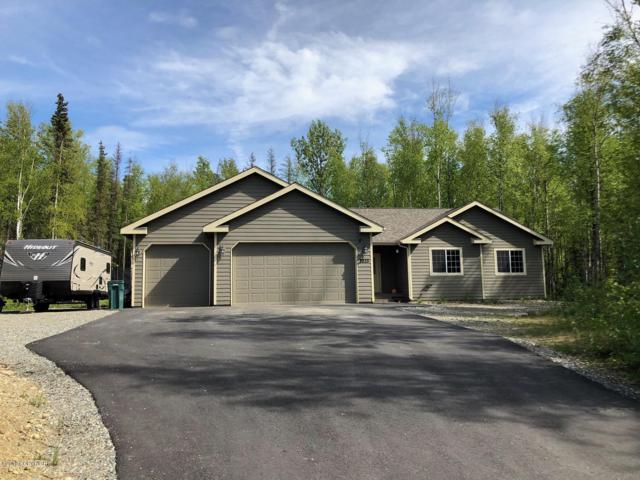 2835 S Cataract Street, Wasilla, AK 99654 (MLS #19-7995) :: Roy Briley Real Estate Group