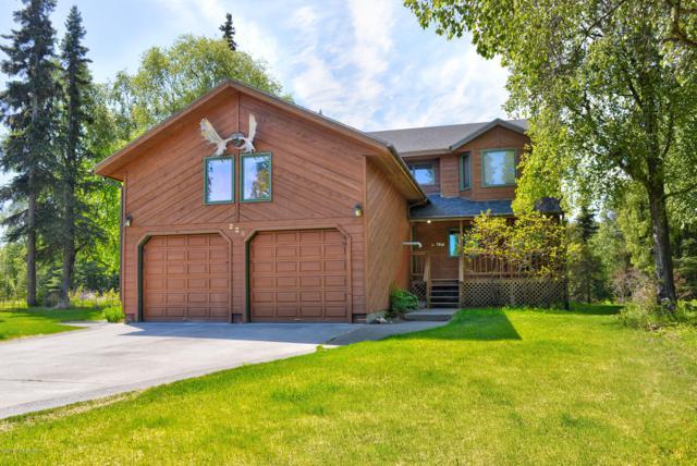 228 Susieanna Lane, Kenai, AK 99611 (MLS #19-8142) :: Roy Briley Real Estate Group