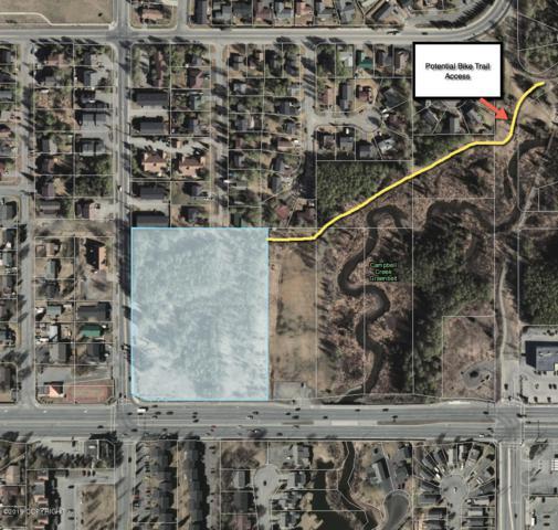 000 Emerald Subdivision, Anchorage, AK 99518 (MLS #19-9146) :: Roy Briley Real Estate Group