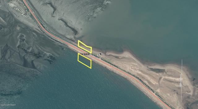 L12 Homer Spit Road, Homer, AK 99603 (MLS #19-9611) :: Roy Briley Real Estate Group