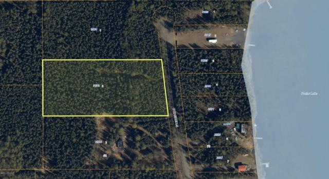 3618 N Karami Lane, Houston, AK 99694 (MLS #19-9708) :: RMG Real Estate Network | Keller Williams Realty Alaska Group
