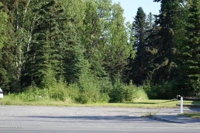 000 S Fireweed Street, Soldotna, AK 99669 (MLS #20-1005) :: Roy Briley Real Estate Group