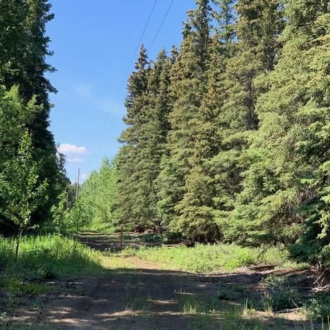 Mile16 Edgerton Highway, Chitina, AK 99566 (MLS #20-10063) :: RMG Real Estate Network | Keller Williams Realty Alaska Group