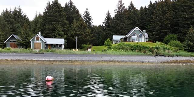 000 Holiday Island, Kodiak, AK 99615 (MLS #20-10105) :: RMG Real Estate Network | Keller Williams Realty Alaska Group
