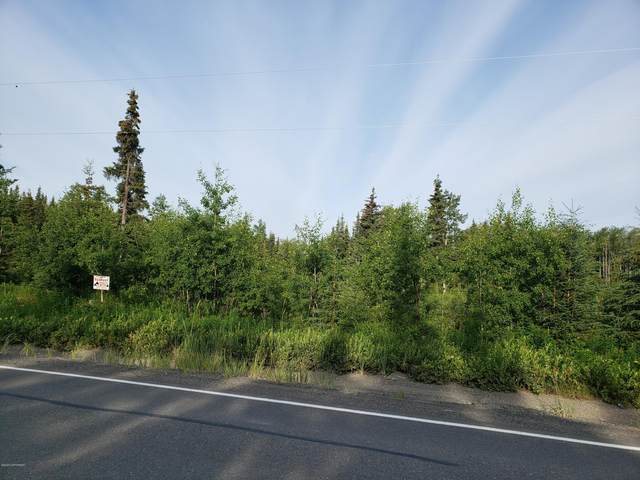 28664 Cohoe Loop Road, Kasilof, AK 99610 (MLS #20-10192) :: Wolf Real Estate Professionals
