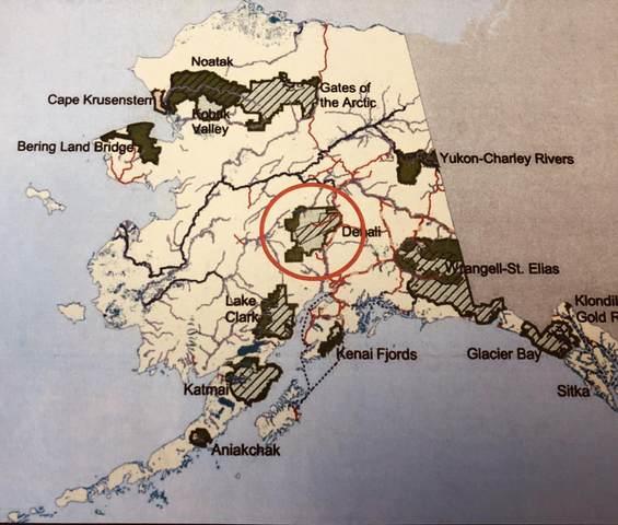 TR Parks Highway, Denali National Park, AK 99744 (MLS #20-10250) :: Wolf Real Estate Professionals