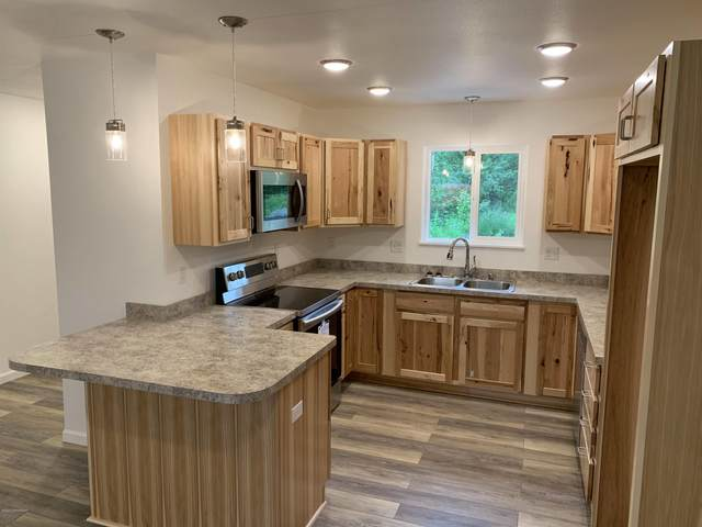 13402 E Constitution Drive, Palmer, AK 99645 (MLS #20-10256) :: Wolf Real Estate Professionals