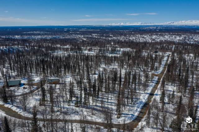 1218 N Evelyn May Lane, Remote, AK 99000 (MLS #20-10743) :: Wolf Real Estate Professionals
