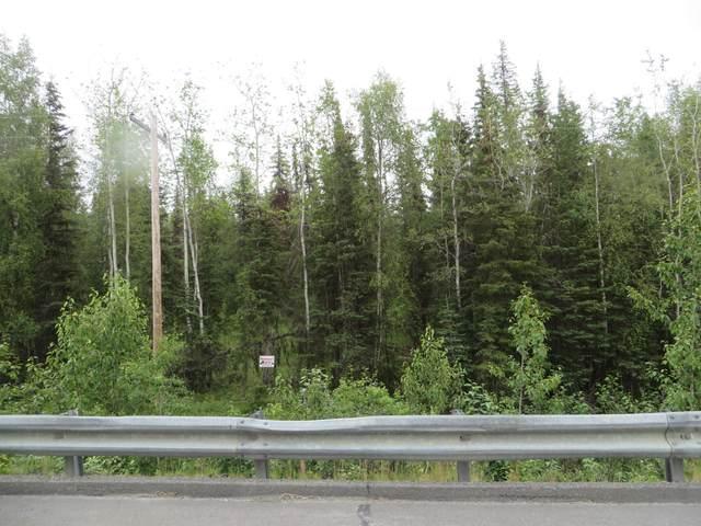 38475 Robinson Loop Road, Sterling, AK 99672 (MLS #20-10877) :: RMG Real Estate Network   Keller Williams Realty Alaska Group
