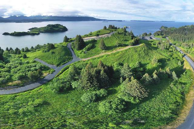 L3 The Point - Cliff Point Rd., Kodiak, AK 99615 (MLS #20-11289) :: Wolf Real Estate Professionals