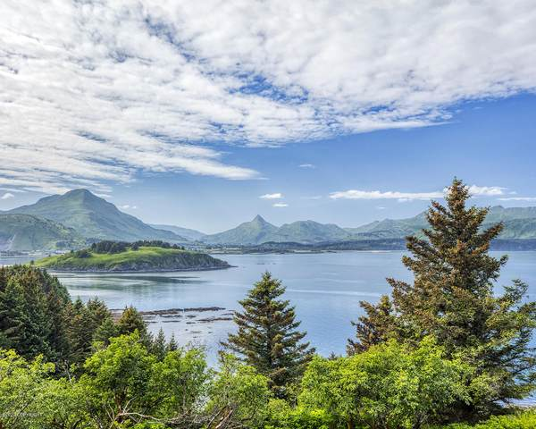 L4 The Point -Cliff Point Estates, Kodiak, AK 99615 (MLS #20-11294) :: Wolf Real Estate Professionals