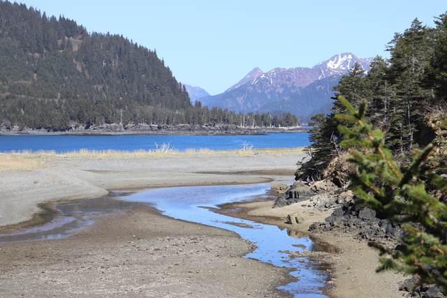 L4 Chrome Bay, Port Graham, AK 99603 (MLS #20-1205) :: Alaska Realty Experts
