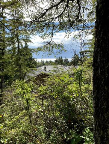 12626 N Tongass Highway, Ketchikan, AK 99901 (MLS #20-12066) :: Wolf Real Estate Professionals