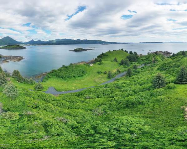 5986 Cliff Point Road, Kodiak, AK 99615 (MLS #20-12105) :: Wolf Real Estate Professionals