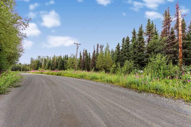 7425 W Island Lake Drive, Wasilla, AK 99654 (MLS #20-1221) :: Roy Briley Real Estate Group