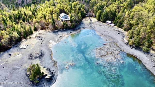 000 Bear Cove, Remote, AK 99603 (MLS #20-13152) :: Wolf Real Estate Professionals