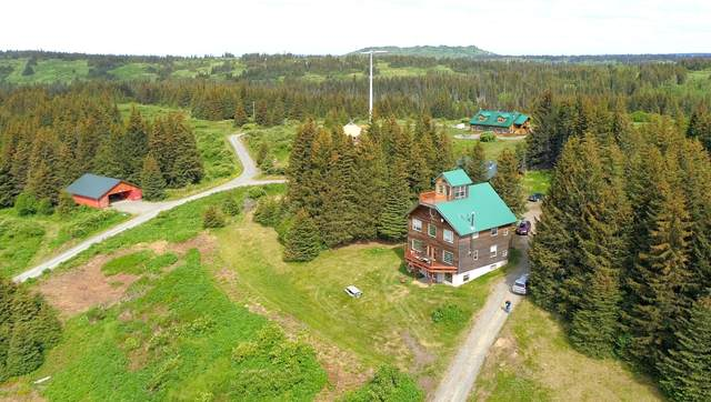 61420 Florence Martin Court, Homer, AK 99603 (MLS #20-13405) :: Wolf Real Estate Professionals