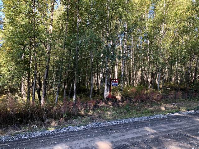 12914 S Goose Creek Rd, Wasilla, AK 99654 (MLS #20-14100) :: Wolf Real Estate Professionals