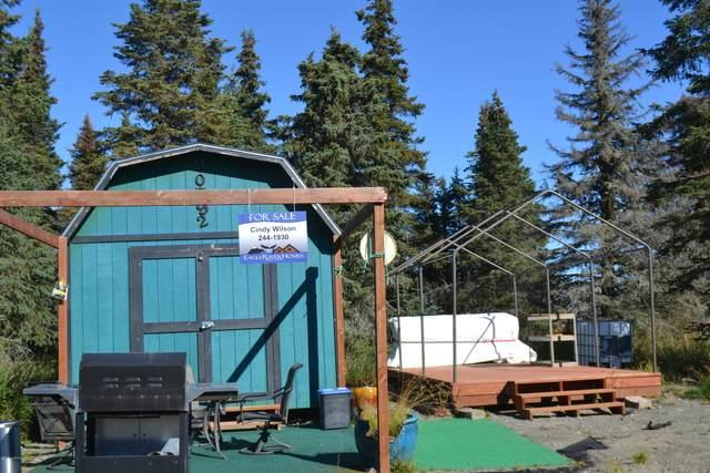 50792 Skiff Court, Kenai, AK 99611 (MLS #20-14185) :: Wolf Real Estate Professionals