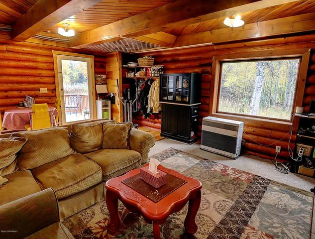 15645 E Lichen Drive, Talkeetna, AK 99676 (MLS #20-14374) :: Wolf Real Estate Professionals