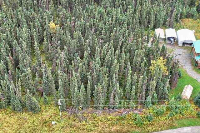 L4 Araoz Street, Soldotna, AK 99669 (MLS #20-14523) :: Alaska Realty Experts