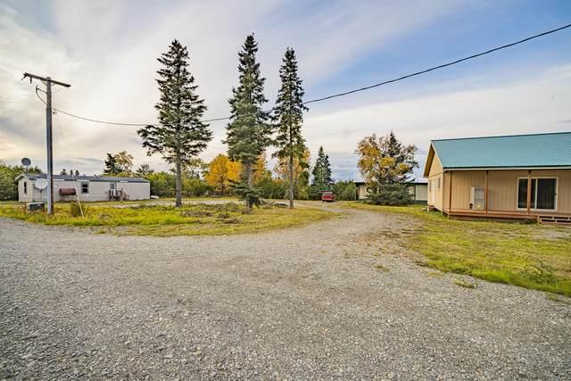 66312 Alder Street, Ninilchik, AK 99639 (MLS #20-14985) :: Wolf Real Estate Professionals
