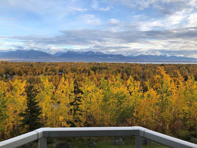 5980 S Clearview Loop, Wasilla, AK 99623 (MLS #20-15244) :: Wolf Real Estate Professionals