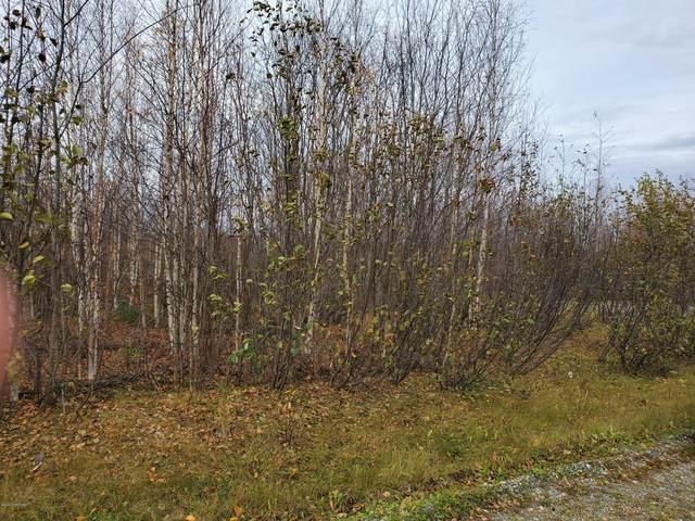834 N Lilly Drive, Big Lake, AK 99652 (MLS #20-15334) :: Synergy Home Team