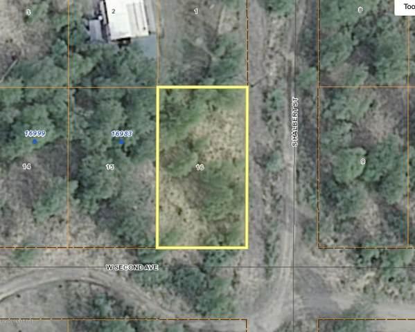 12058 S Halbert Street, Wasilla, AK 99654 (MLS #20-15590) :: Synergy Home Team