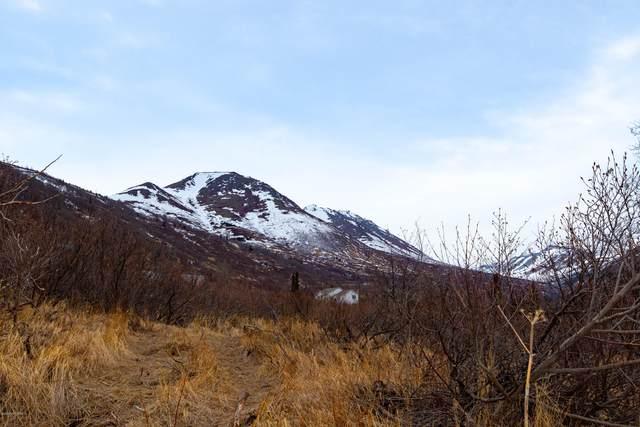 LOT 10 Pathfinder Circle, Anchorage, AK 99516 (MLS #20-15708) :: Wolf Real Estate Professionals