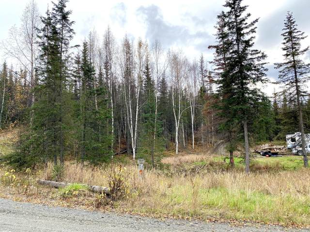 37775 Panoramic Drive, Sterling, AK 99672 (MLS #20-15825) :: Wolf Real Estate Professionals