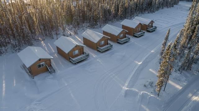 46435 Maudi Drive, Kenai, AK 99611 (MLS #20-1606) :: Roy Briley Real Estate Group