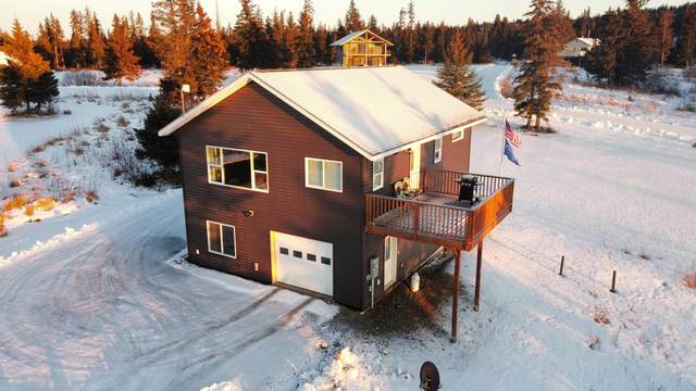 67576 Endless View Loop, Homer, AK 99603 (MLS #20-17892) :: Wolf Real Estate Professionals