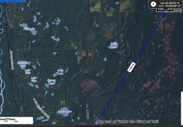 L4 B11 No Road, Talkeetna, AK 99676 (MLS #20-18111) :: Wolf Real Estate Professionals