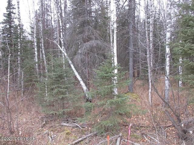 Lot 8 N Phillips Drive, Wasilla, AK 99623 (MLS #20-18193) :: Wolf Real Estate Professionals