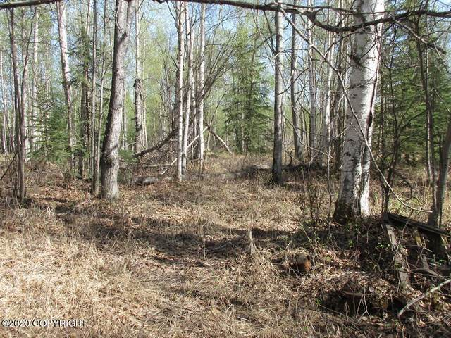 Tract A N Meadow Lakes Loop, Wasilla, AK 99623 (MLS #20-18194) :: Wolf Real Estate Professionals