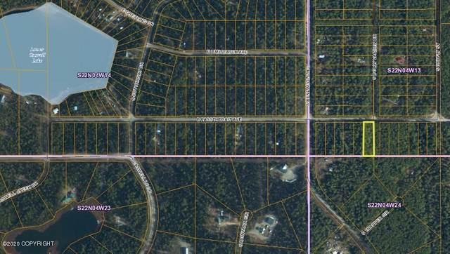 20390 Passthebait Avenue, Willow, AK 99688 (MLS #20-1888) :: RMG Real Estate Network | Keller Williams Realty Alaska Group