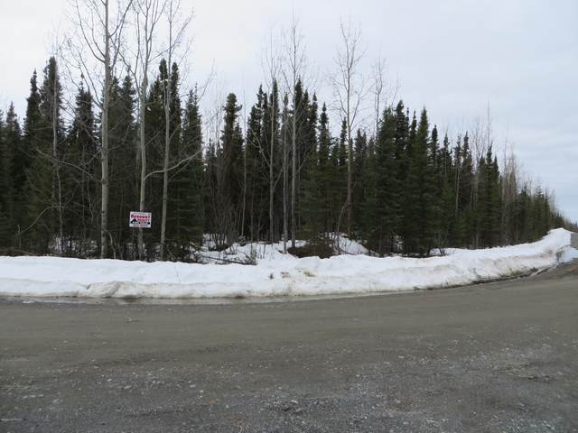 L4B BC Lourdes Avenue, Soldotna, AK 99669 (MLS #20-2518) :: Wolf Real Estate Professionals