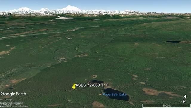 Tr F Mama Bear Lake, Talkeetna, AK 99676 (MLS #20-2857) :: Wolf Real Estate Professionals