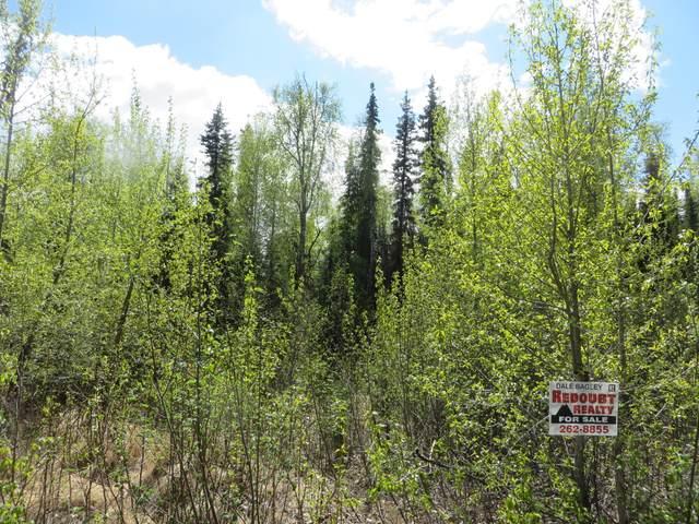 L6 B2 Myla Drive, Soldotna, AK 99669 (MLS #20-2895) :: Wolf Real Estate Professionals