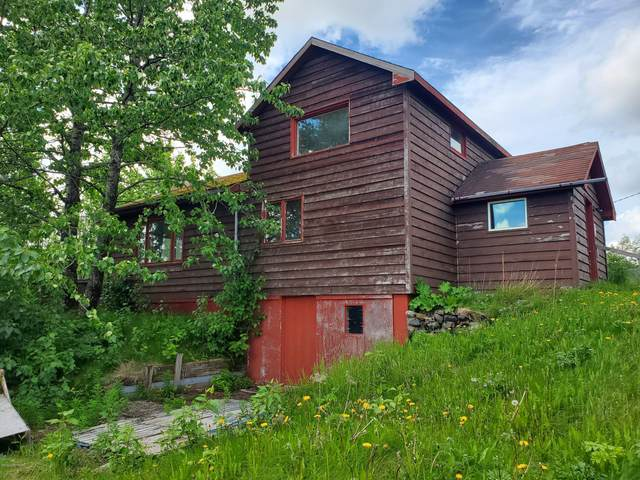 303 Central Avenue, Dillingham, AK 99576 (MLS #20-3560) :: Wolf Real Estate Professionals