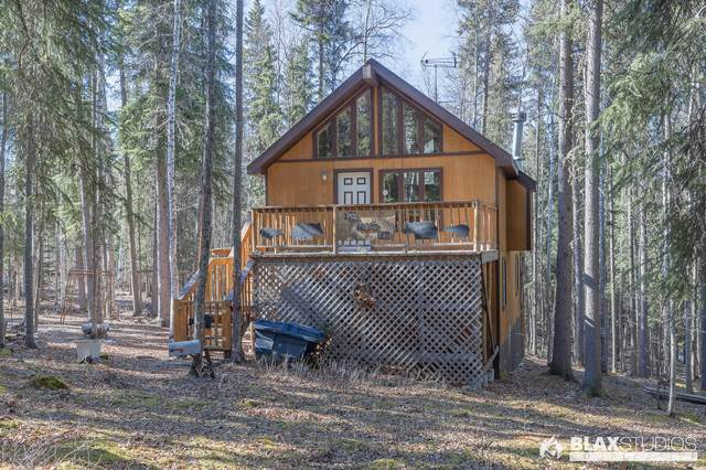 6990 Harebell Avenue, Salcha, AK 99714 (MLS #20-4260) :: Wolf Real Estate Professionals