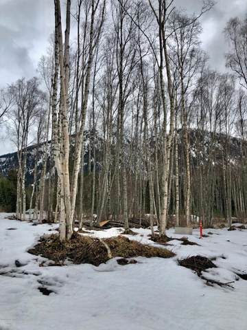 L4 Rand Drive, Indian, AK 99540 (MLS #20-4895) :: Wolf Real Estate Professionals