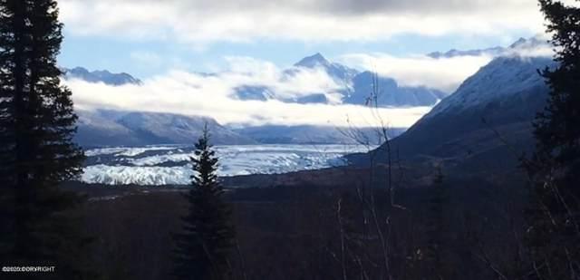 L1 Pinochle, Chickaloon, AK 99674 (MLS #20-5451) :: RMG Real Estate Network | Keller Williams Realty Alaska Group