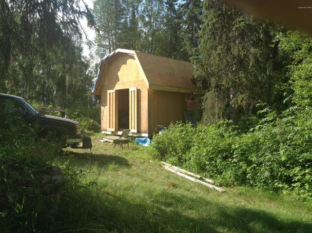 L6 B4 S Back Country Drive, Remote, AK 99000 (MLS #20-5672) :: RMG Real Estate Network | Keller Williams Realty Alaska Group